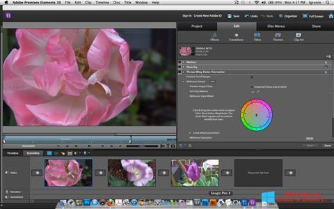 Screenshot Adobe Premiere Elements für Windows 8.1
