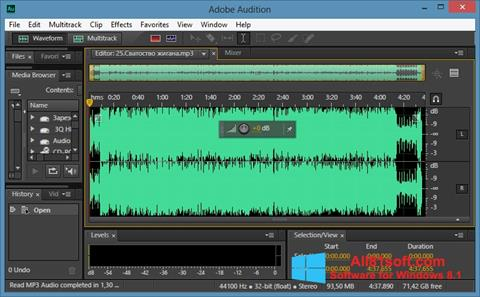 Screenshot Adobe Audition CC für Windows 8.1