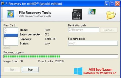 Screenshot F-Recovery SD für Windows 8.1