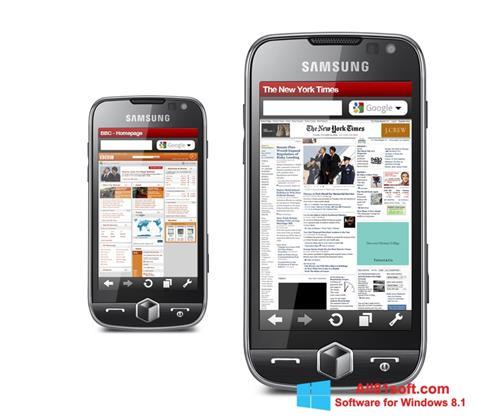 Screenshot Opera Mobile für Windows 8.1