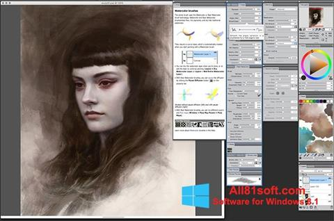 Screenshot Corel Painter für Windows 8.1