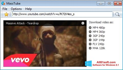 Screenshot MassTube für Windows 8.1