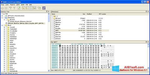 Screenshot DMDE für Windows 8.1