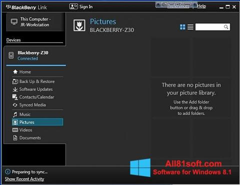 Screenshot BlackBerry Link für Windows 8.1