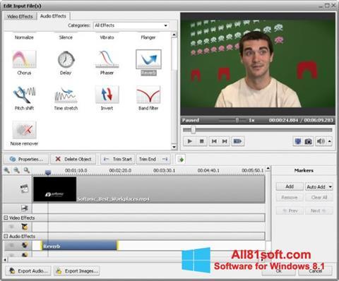 Screenshot AVS Video Converter für Windows 8.1
