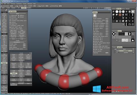 Screenshot 3D-Coat für Windows 8.1