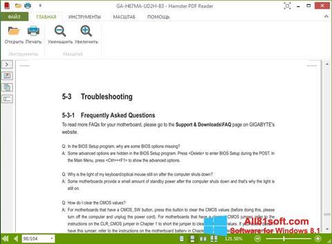 Screenshot Hamster PDF Reader für Windows 8.1