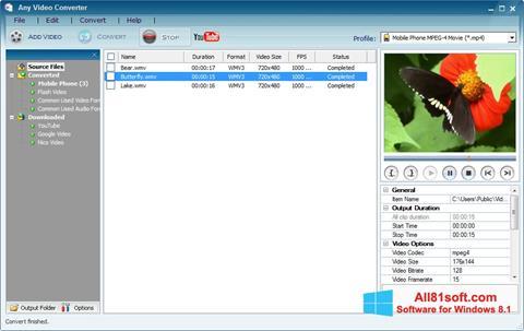 Screenshot Any Video Converter für Windows 8.1