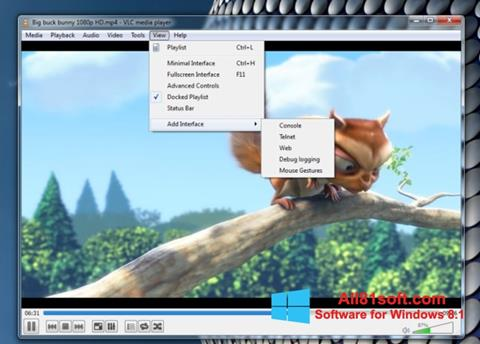 Screenshot VLC Media Player für Windows 8.1