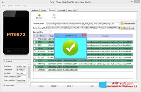 Screenshot FlashTool für Windows 8.1
