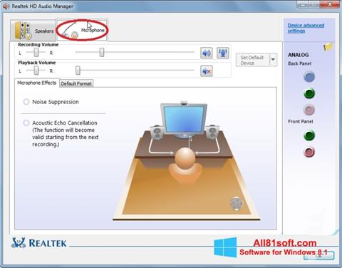 Screenshot Realtek Audio Driver für Windows 8.1