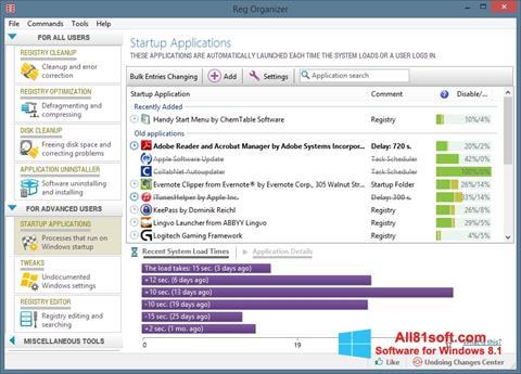 Screenshot Reg Organizer für Windows 8.1